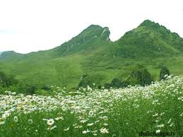 Du lịch Sapa hè ngắm núi Hàm Rồng.