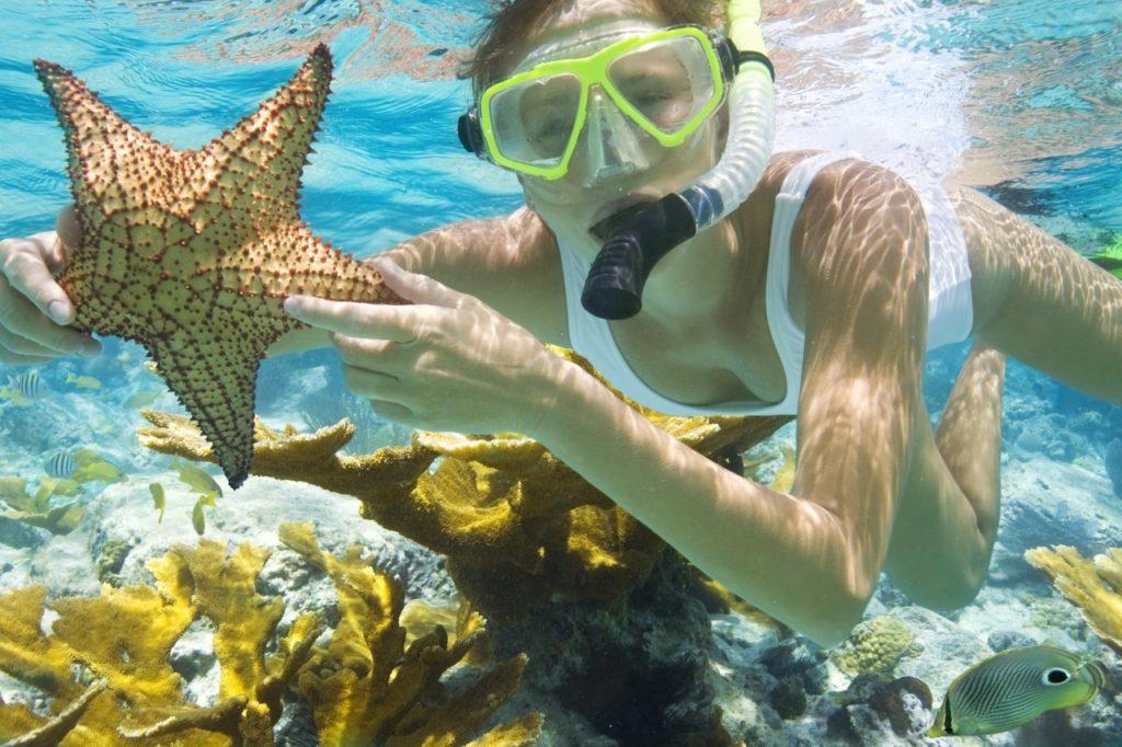 Lặn ngắm san hô - bức tranh sinh động dưới đáy đại dương