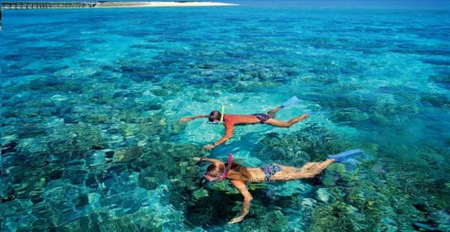 Lặn ngắm cá và san hô ở hòn Thơm