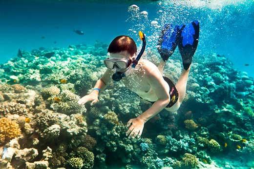Lặn biển ngắm san hô – Trải nghiệm không thể bỏ lỡ tại Phú Quốc
